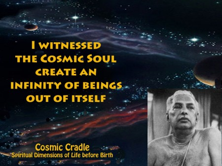 """I witnesses the cosmic soul create an infinity of beings out of itself."" - Cosmic Cradle: Spiritual Dimensions of Life before Birth"