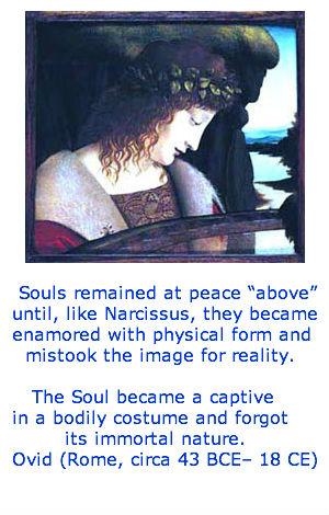 Cosmic-Cradle-narcissus-spiritual-amnesia